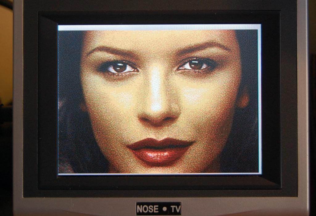 The C3 Synapse Test Picture of Catherine Zeta Jones on a 256x224 screen resolution.